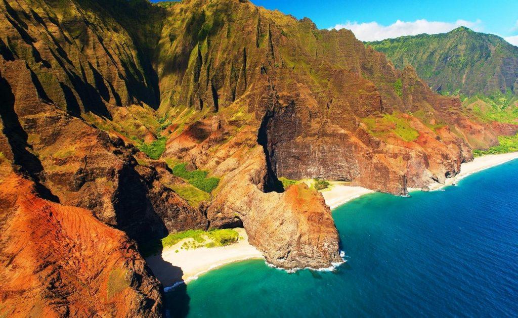 1_gonopu-kauai