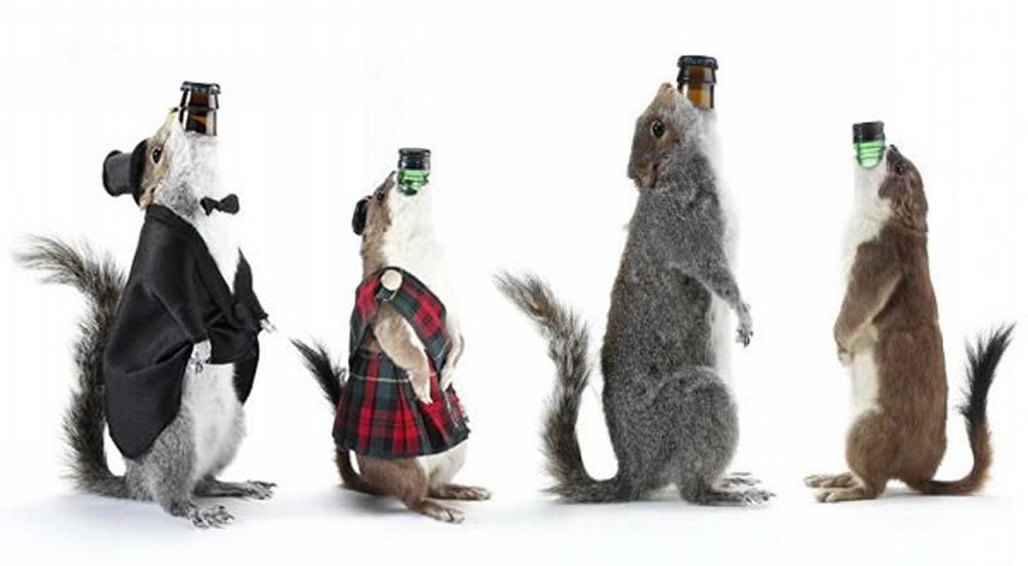 samoe-dorogoe-pivo-v-mire-czena